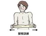 腱板強化運動