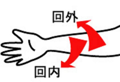手首の動き(回内回外)